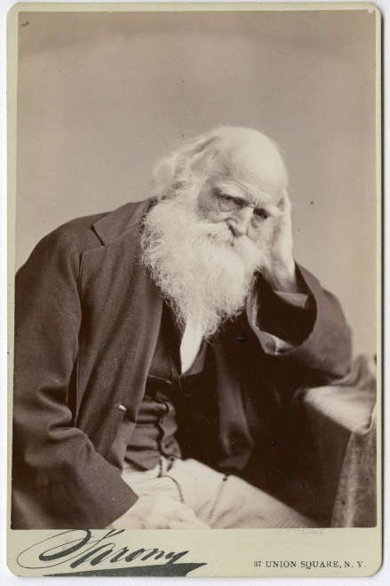 William Cullen Bryant lincoln
